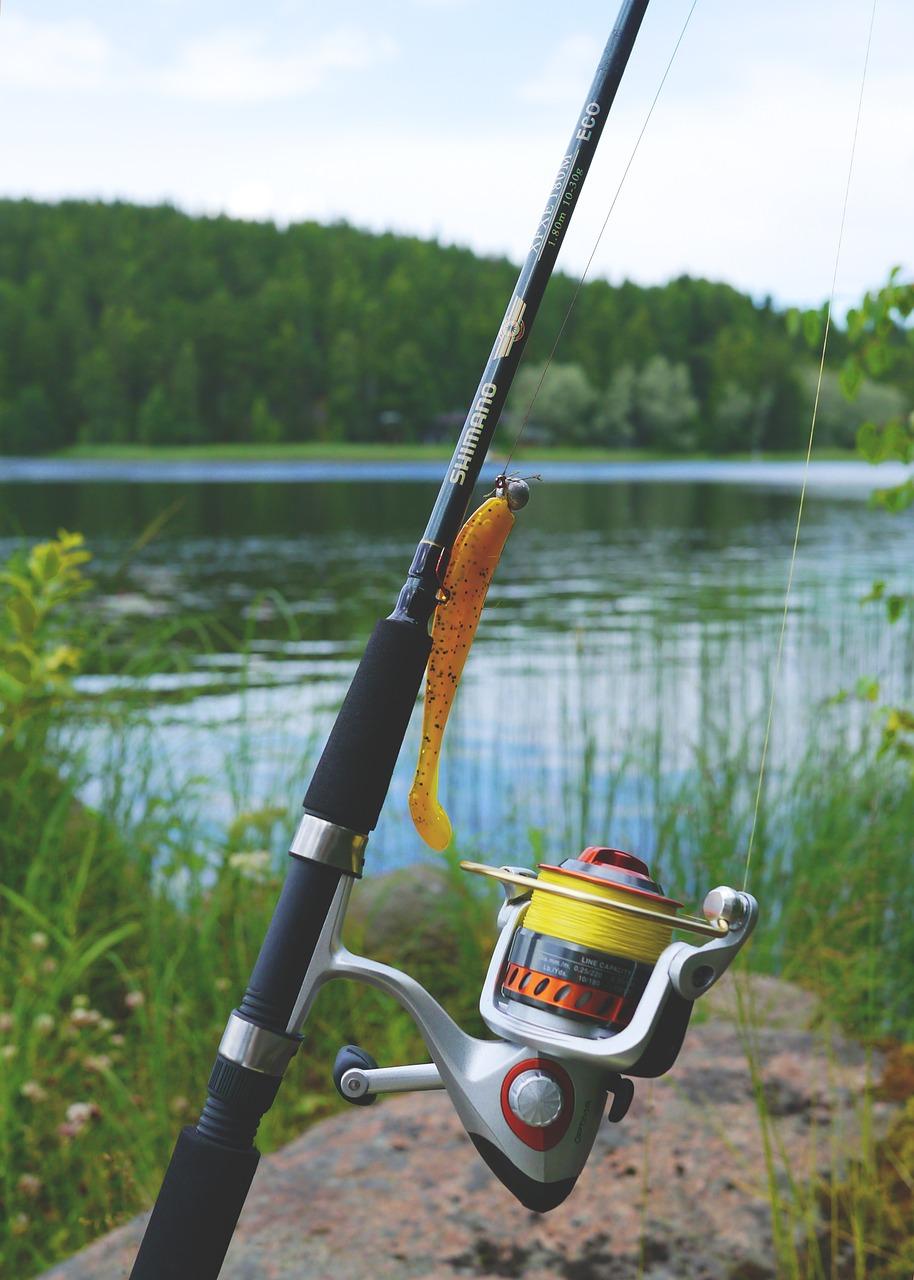fishing, fish equipment, fishing rod-887523.jpg